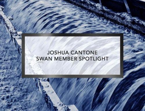SWAN Member Spotlights